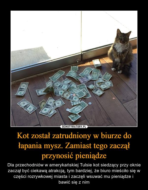 Kot został zatrudniony w biurze do łapania mysz. Zamiast tego zaczął przynosić pieniądze – Dla przechodniów w amerykańskiej Tulsie kot siedzący przy oknie zaczął być ciekawą atrakcją, tym bardziej, że biuro mieściło się w części rozrywkowej miasta i zaczęli wsuwać mu pieniądze i bawić się z nim