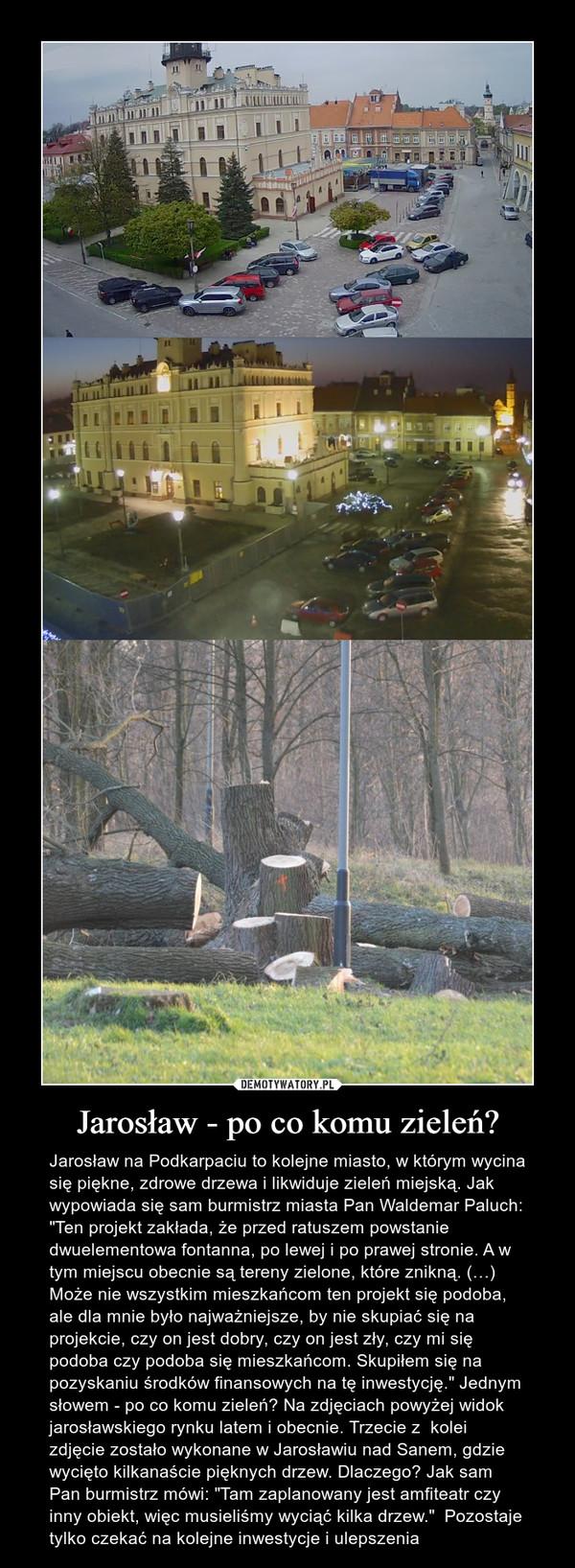 """Jarosław - po co komu zieleń? – Jarosław na Podkarpaciu to kolejne miasto, w którym wycina się piękne, zdrowe drzewa i likwiduje zieleń miejską. Jak wypowiada się sam burmistrz miasta Pan Waldemar Paluch: """"Ten projekt zakłada, że przed ratuszem powstanie dwuelementowa fontanna, po lewej i po prawej stronie. A w tym miejscu obecnie są tereny zielone, które znikną. (…) Może nie wszystkim mieszkańcom ten projekt się podoba, ale dla mnie było najważniejsze, by nie skupiać się na projekcie, czy on jest dobry, czy on jest zły, czy mi się podoba czy podoba się mieszkańcom. Skupiłem się na pozyskaniu środków finansowych na tę inwestycję."""" Jednym słowem - po co komu zieleń? Na zdjęciach powyżej widok jarosławskiego rynku latem i obecnie. Trzecie z  kolei zdjęcie zostało wykonane w Jarosławiu nad Sanem, gdzie  wycięto kilkanaście pięknych drzew. Dlaczego? Jak sam Pan burmistrz mówi: """"Tam zaplanowany jest amfiteatr czy inny obiekt, więc musieliśmy wyciąć kilka drzew.""""  Pozostaje tylko czekać na kolejne inwestycje i ulepszenia"""