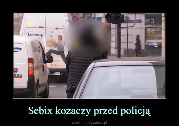 Sebix kozaczy przed policją –