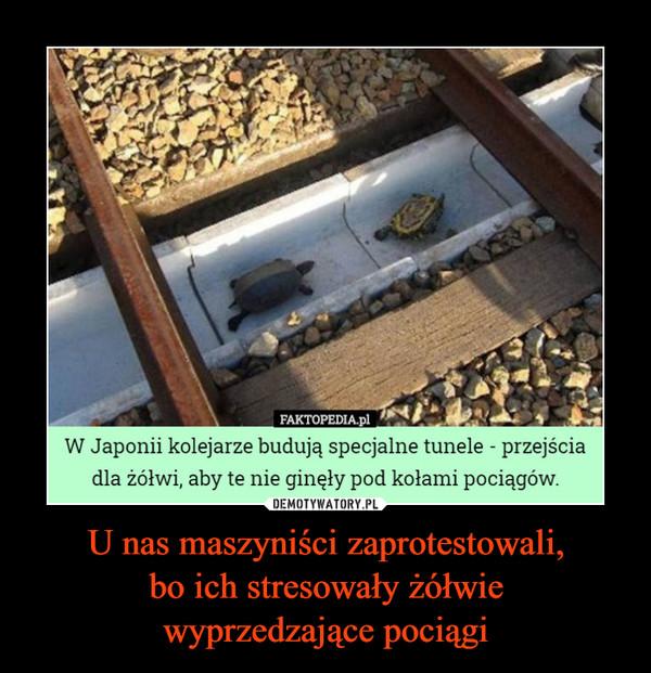 U nas maszyniści zaprotestowali,bo ich stresowały żółwiewyprzedzające pociągi –  FAKTOPEDIA.plW Japonii kolejarze budują specjalne tunele - przejściadla żółwi, aby te nie ginęły pod kołami pociągów.