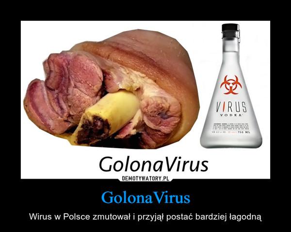 GolonaVirus – Wirus w Polsce zmutował i przyjął postać bardziej łagodną