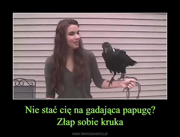 Nie stać cię na gadająca papugę?Złap sobie kruka –