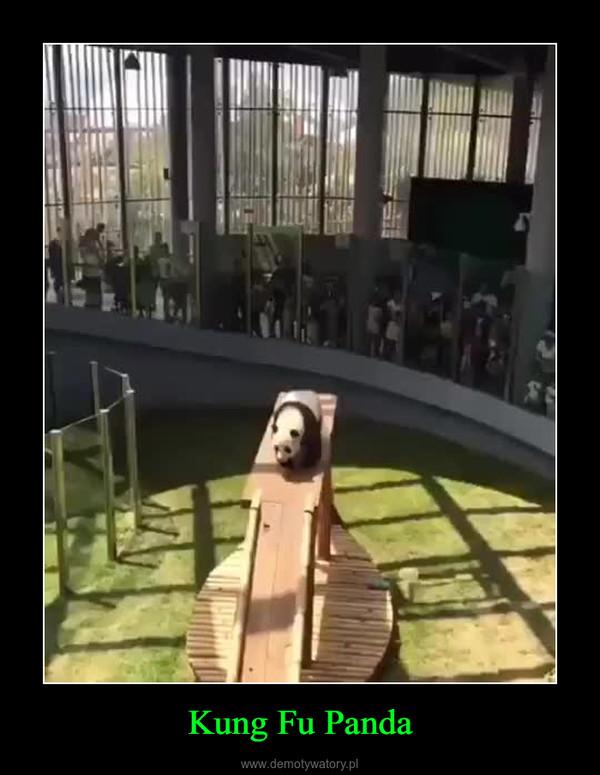 Kung Fu Panda –