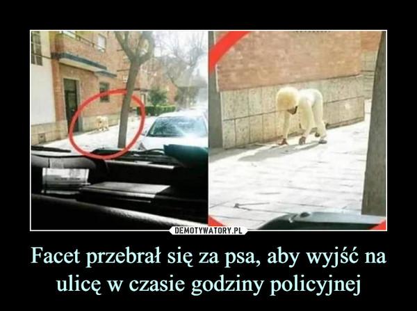 Facet przebrał się za psa, aby wyjść na ulicę w czasie godziny policyjnej –