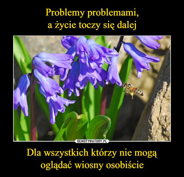 Dla wszystkich którzy nie mogąoglądać wiosny osobiście –
