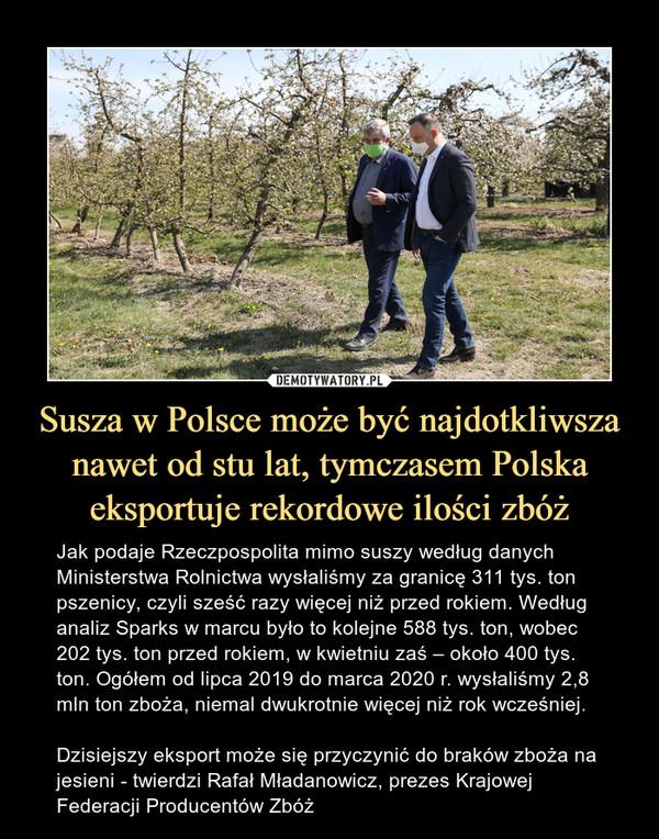 Susza w Polsce może być najdotkliwsza nawet od stu lat, tymczasem Polska eksportuje rekordowe ilości zbóż – Jak podaje Rzeczpospolita mimo suszy według danych Ministerstwa Rolnictwa wysłaliśmy za granicę 311 tys. ton pszenicy, czyli sześć razy więcej niż przed rokiem. Według analiz Sparks w marcu było to kolejne 588 tys. ton, wobec 202 tys. ton przed rokiem, w kwietniu zaś – około 400 tys. ton. Ogółem od lipca 2019 do marca 2020 r. wysłaliśmy 2,8 mln ton zboża, niemal dwukrotnie więcej niż rok wcześniej.Dzisiejszy eksport może się przyczynić do braków zboża na jesieni - twierdzi Rafał Mładanowicz, prezes Krajowej Federacji Producentów Zbóż