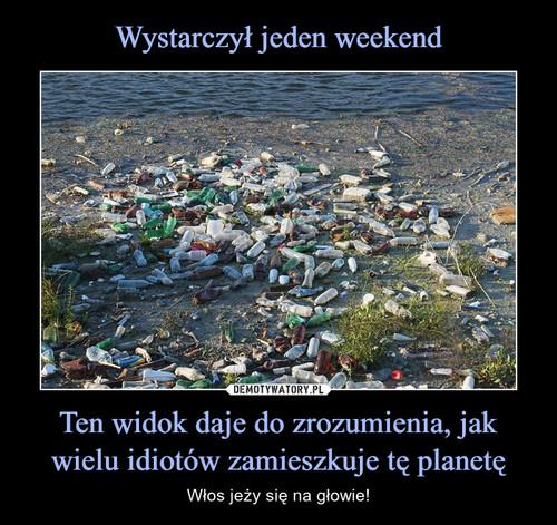 Wystarczył jeden weekend Ten widok daje do zrozumienia, jak wielu idiotów zamieszkuje tę planetę