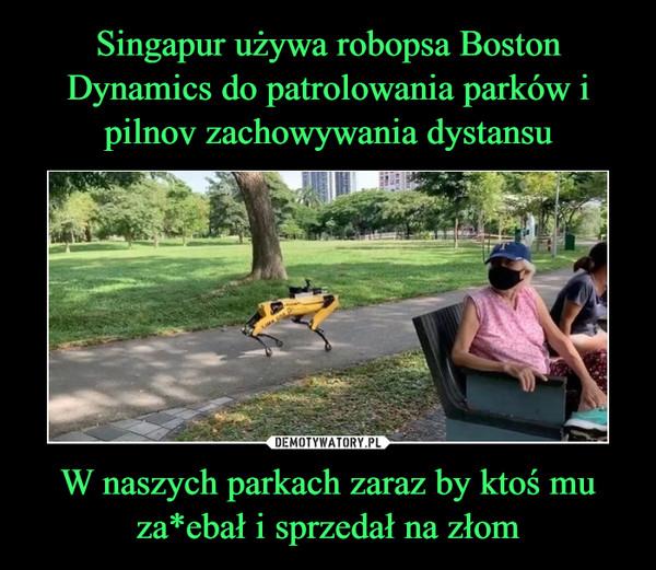 W naszych parkach zaraz by ktoś mu za*ebał i sprzedał na złom –