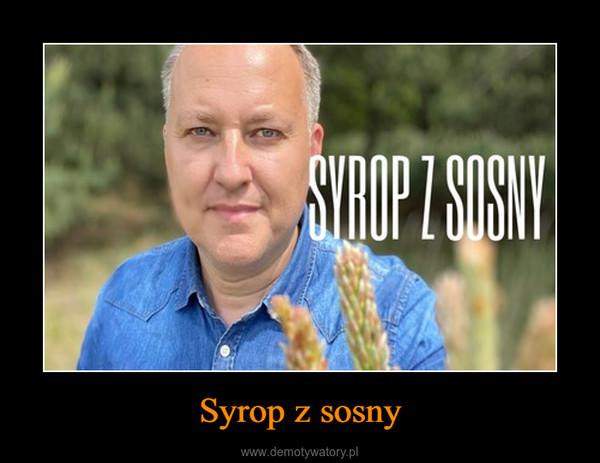 Syrop z sosny –