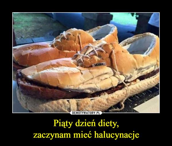 Piąty dzień diety,zaczynam mieć halucynacje –