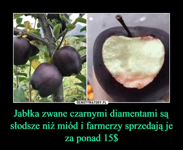 Jabłka zwane czarnymi diamentami są słodsze niż miód i farmerzy sprzedają je za ponad 15$ –