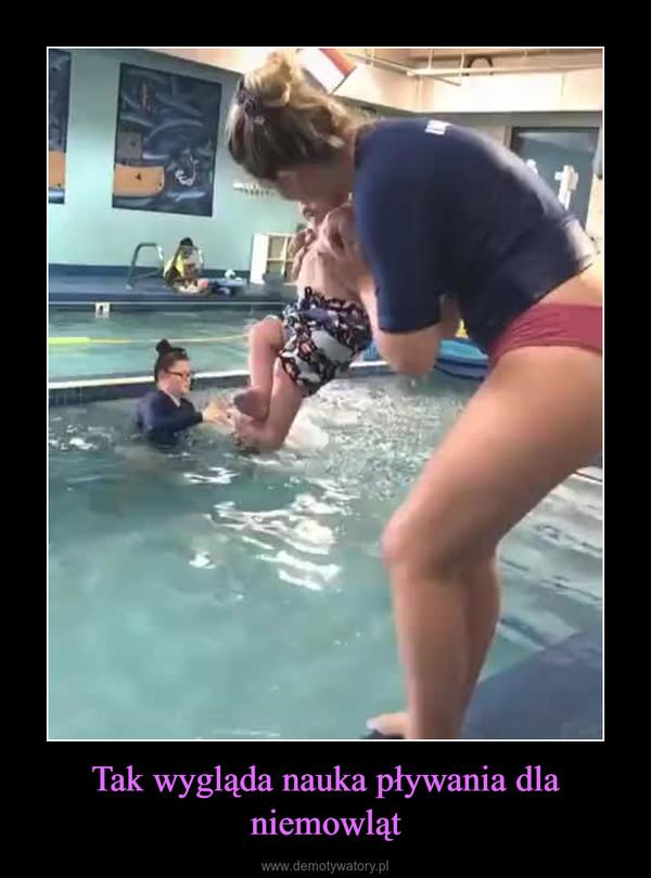 Tak wygląda nauka pływania dla niemowląt –