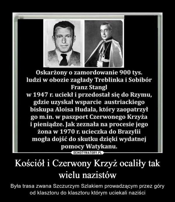Kościół i Czerwony Krzyż ocaliły tak wielu nazistów – Była trasa zwana Szczurzym Szlakiem prowadzącym przez góry od klasztoru do klasztoru którym uciekali naziści