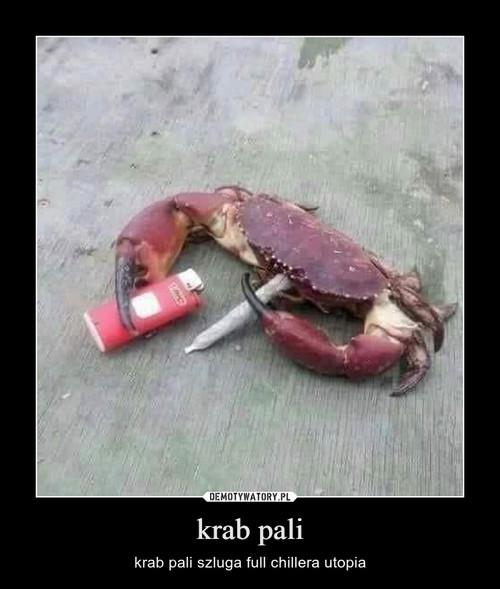 krab pali