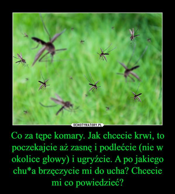 Co za tępe komary. Jak chcecie krwi, to poczekajcie aż zasnę i podlećcie (nie w okolice głowy) i ugryźcie. A po jakiego chu*a brzęczycie mi do ucha? Chcecie mi co powiedzieć? –
