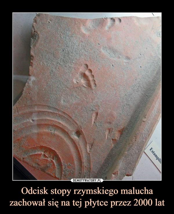 Odcisk stopy rzymskiego malucha zachował się na tej płytce przez 2000 lat –