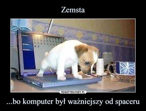 Zemsta ...bo komputer był ważniejszy od spaceru