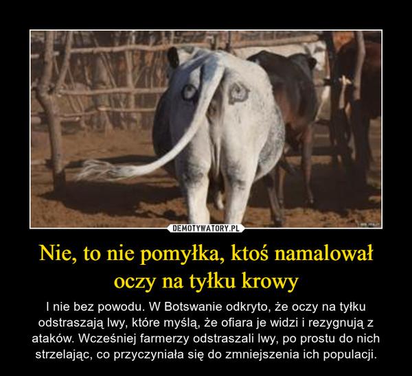 Nie, to nie pomyłka, ktoś namalował oczy na tyłku krowy – I nie bez powodu. W Botswanie odkryto, że oczy na tyłku odstraszają lwy, które myślą, że ofiara je widzi i rezygnują z ataków. Wcześniej farmerzy odstraszali lwy, po prostu do nich strzelając, co przyczyniała się do zmniejszenia ich populacji.