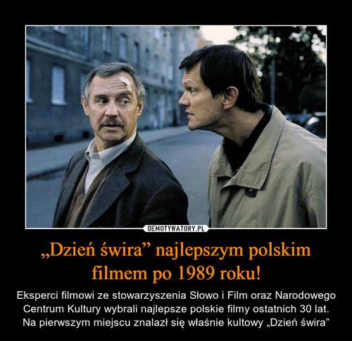 """""""Dzień świra"""" najlepszym polskim filmem po 1989 roku!"""
