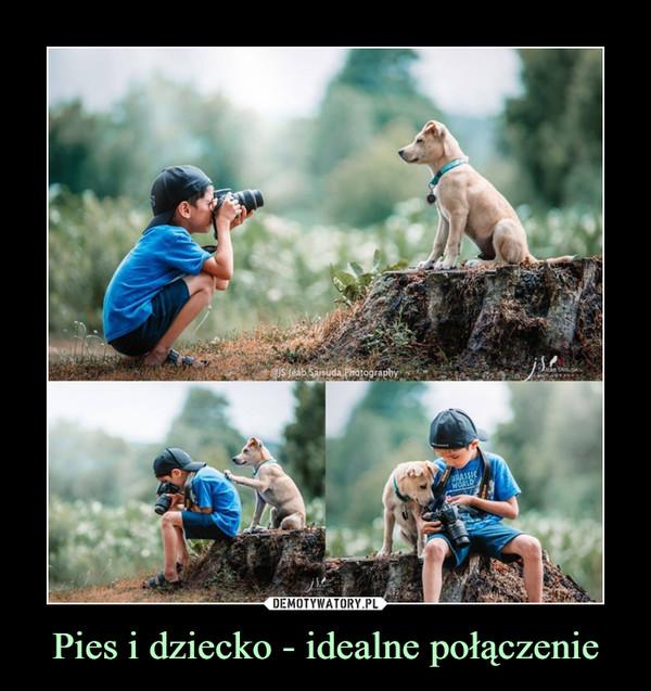 Pies i dziecko - idealne połączenie –