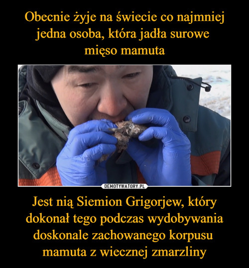 Obecnie żyje na świecie co najmniej jedna osoba, która jadła surowe  mięso mamuta Jest nią Siemion Grigorjew, który dokonał tego podczas wydobywania doskonale zachowanego korpusu  mamuta z wiecznej zmarzliny