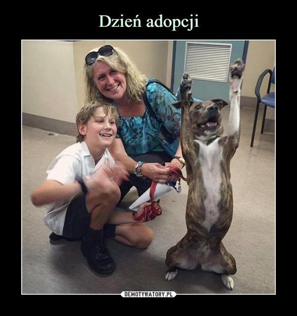 Dzień adopcji