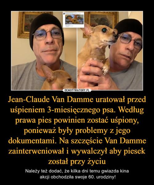 Jean-Claude Van Damme uratował przed uśpieniem 3-miesięcznego psa. Według prawa pies powinien zostać uśpiony, ponieważ były problemy z jego dokumentami. Na szczęście Van Damme zainterweniował i wywalczył aby piesek został przy życiu
