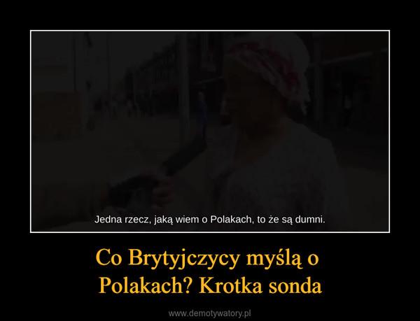 Co Brytyjczycy myślą o Polakach? Krotka sonda –