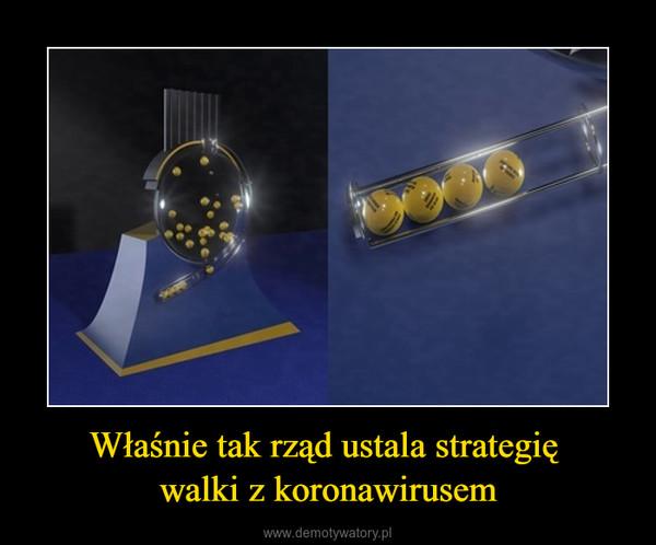 Właśnie tak rząd ustala strategię walki z koronawirusem –