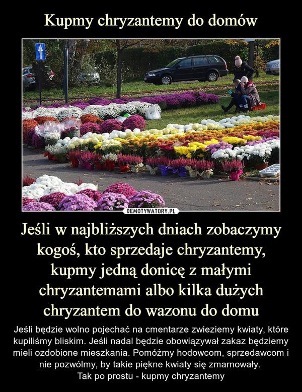 Jeśli w najbliższych dniach zobaczymy kogoś, kto sprzedaje chryzantemy, kupmy jedną donicę z małymi chryzantemami albo kilka dużych chryzantem do wazonu do domu – Jeśli będzie wolno pojechać na cmentarze zwieziemy kwiaty, które kupiliśmy bliskim. Jeśli nadal będzie obowiązywał zakaz będziemy mieli ozdobione mieszkania. Pomóżmy hodowcom, sprzedawcom i nie pozwólmy, by takie piękne kwiaty się zmarnowały. Tak po prostu - kupmy chryzantemy