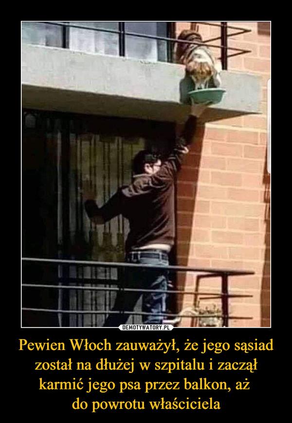 Pewien Włoch zauważył, że jego sąsiad został na dłużej w szpitalu i zaczął karmić jego psa przez balkon, aż do powrotu właściciela –