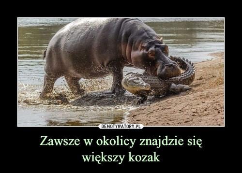 Zawsze w okolicy znajdzie się większy kozak