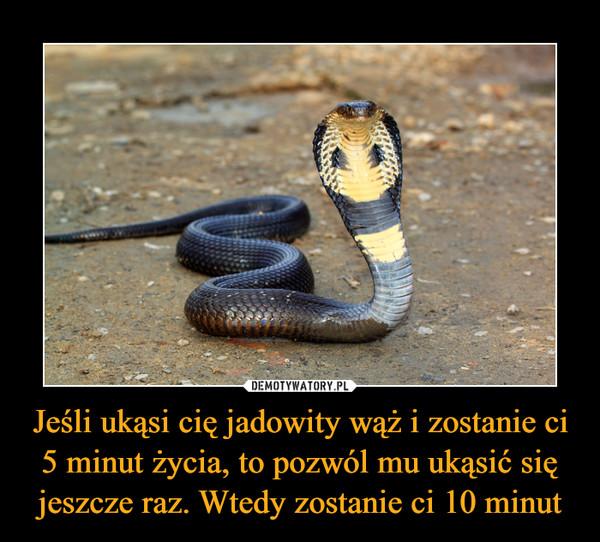 Jeśli ukąsi cię jadowity wąż i zostanie ci 5 minut życia, to pozwól mu ukąsić się jeszcze raz. Wtedy zostanie ci 10 minut –