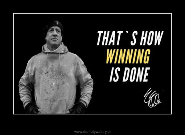 Motywacyjny Rocky – Stary dobry Rocky Balboa