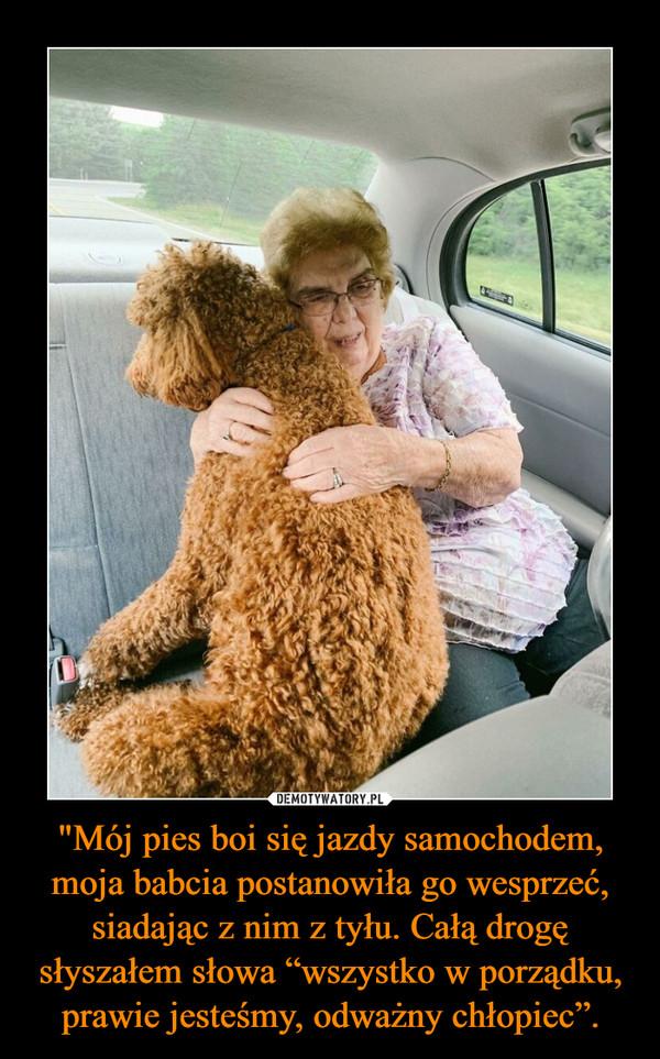 """""""Mój pies boi się jazdy samochodem, moja babcia postanowiła go wesprzeć, siadając z nim z tyłu. Całą drogę słyszałem słowa """"wszystko w porządku, prawie jesteśmy, odważny chłopiec"""". –"""