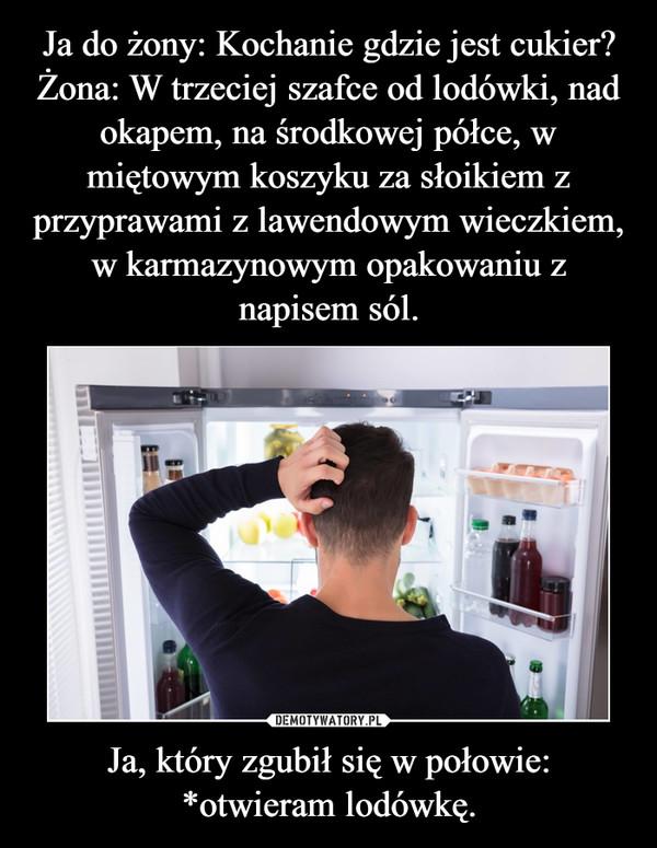 Ja, który zgubił się w połowie: *otwieram lodówkę. –