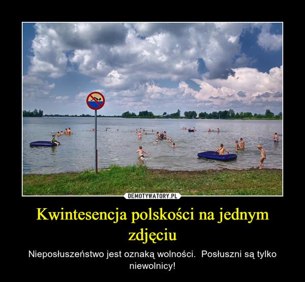 Kwintesencja polskości na jednym zdjęciu – Nieposłuszeństwo jest oznaką wolności.  Posłuszni są tylko niewolnicy!