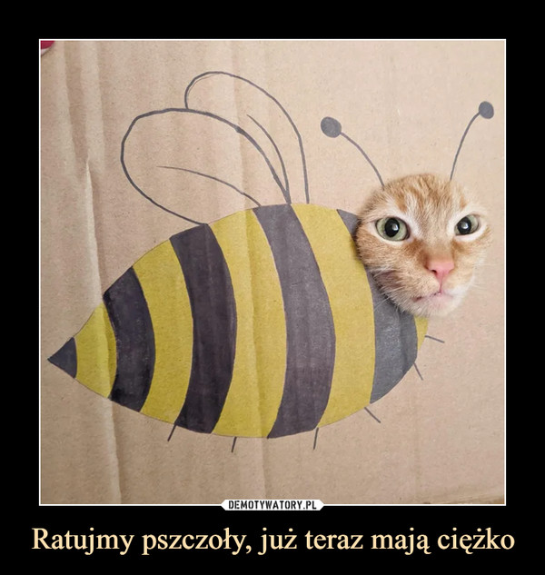 [Obrazek: 1611301518_lu4pzo_600.jpg]