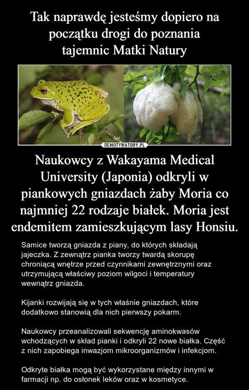 Tak naprawdę jesteśmy dopiero na początku drogi do poznania tajemnic Matki Natury Naukowcy z Wakayama Medical University (Japonia) odkryli w piankowych gniazdach żaby Moria co najmniej 22 rodzaje białek. Moria jest endemitem zamieszkującym lasy Honsiu.