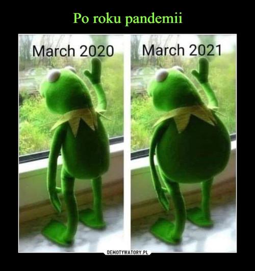 Po roku pandemii