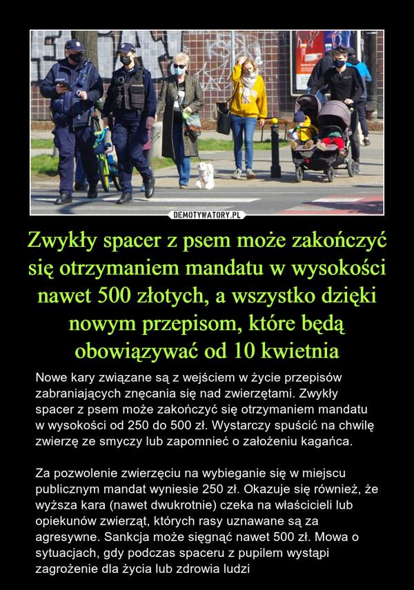 Zwykły spacer z psem może zakończyć się otrzymaniem mandatu w wysokości nawet 500 złotych, a wszystko dzięki nowym przepisom, które będą obowiązywać od 10 kwietnia