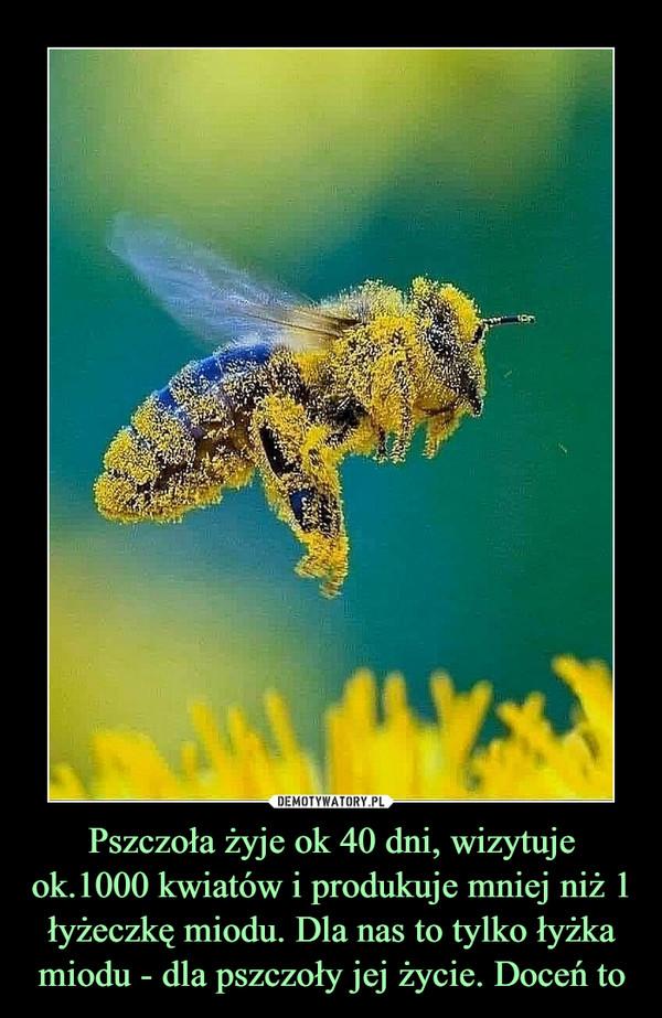 Pszczoła żyje ok 40 dni, wizytuje ok.1000 kwiatów i produkuje mniej niż 1 łyżeczkę miodu. Dla nas to tylko łyżka miodu - dla pszczoły jej życie. Doceń to –
