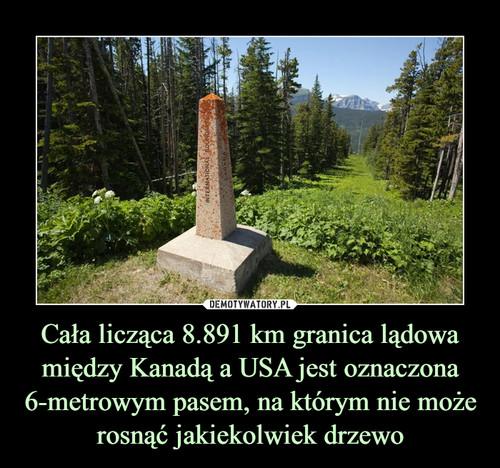 Cała licząca 8.891 km granica lądowa między Kanadą a USA jest oznaczona 6-metrowym pasem, na którym nie może rosnąć jakiekolwiek drzewo