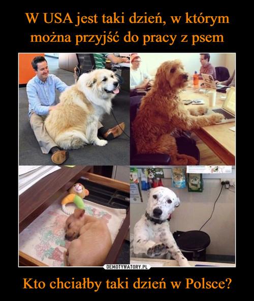 W USA jest taki dzień, w którym można przyjść do pracy z psem Kto chciałby taki dzień w Polsce?