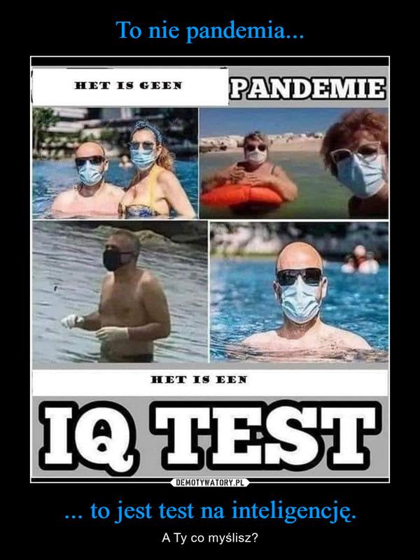 ... to jest test na inteligencję. – A Ty co myślisz?
