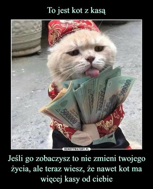 To jest kot z kasą Jeśli go zobaczysz to nie zmieni twojego życia, ale teraz wiesz, że nawet kot ma więcej kasy od ciebie