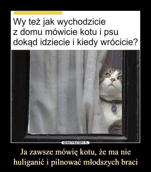 Ja zawsze mówię kotu, że ma nie huliganić i pilnować młodszych braci –