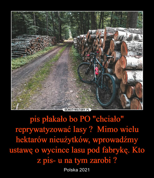 """pis płakało bo PO """"chciało"""" reprywatyzować lasy ?  Mimo wielu hektarów nieużytków, wprowadźmy ustawę o wycince lasu pod fabrykę. Kto z pis- u na tym zarobi ? – Polska 2021"""