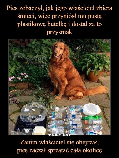 Pies zobaczył, jak jego właściciel zbiera śmieci, więc przyniósł mu pustą plastikową butelkę i dostał za to przysmak Zanim właściciel się obejrzał, pies zaczął sprzątać całą okolicę