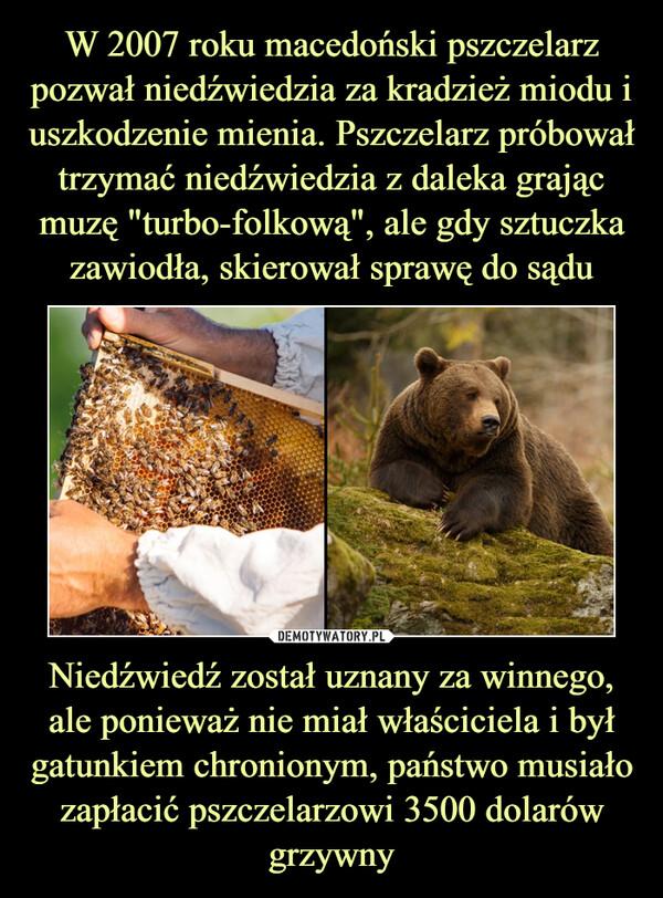 Niedźwiedź został uznany za winnego, ale ponieważ nie miał właściciela i był gatunkiem chronionym, państwo musiało zapłacić pszczelarzowi 3500 dolarów grzywny –